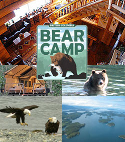 Visit Bear Camp at Chilko Lake Lodge